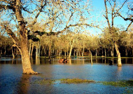 Water Flood 版權商用圖片