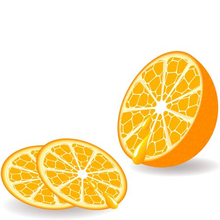 Sliced orange with the drops on a white background. vector illustration Vector