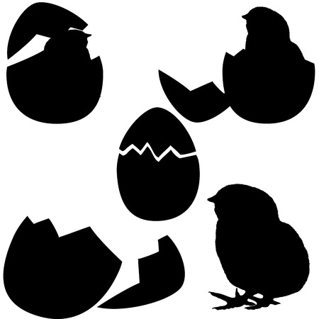 Chicken hatching.chicken's silhouette on white background. vector Stock Vector - 5264865