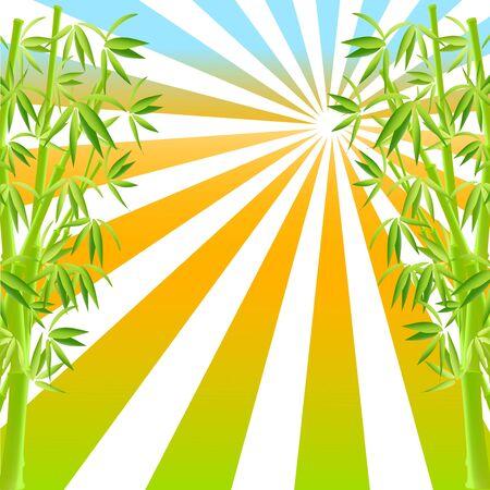 vector illustration of bamboo Vector