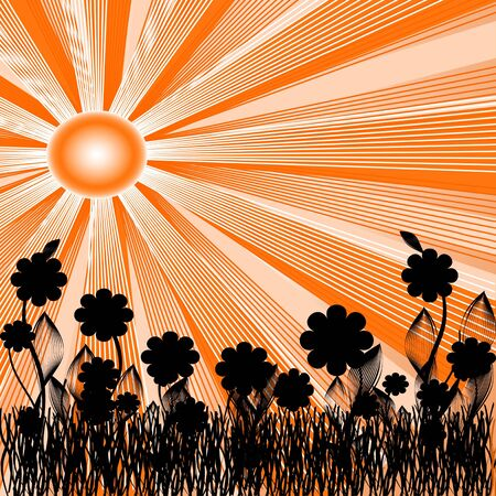 vector illustration of a summer background with the silhouettes of flowers. Stock Vector - 5827458