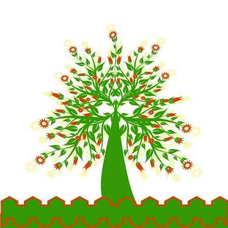 illustration of a flowered tree isolated on white Stock Vector - 6924514