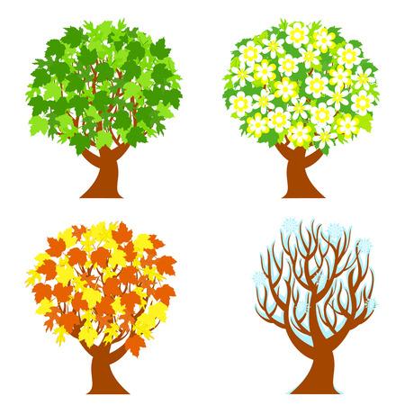 흰색 배경에 고립 된 4 계절 나무의 그림.