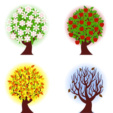 リンゴの木の 4 つの季節のイラスト。  イラスト・ベクター素材
