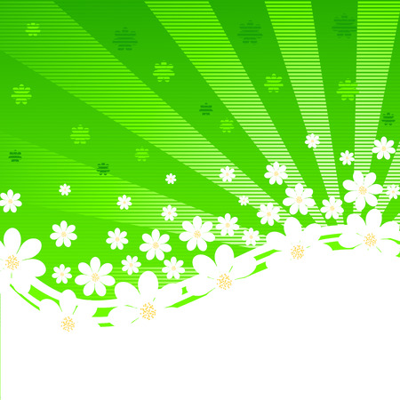 petal: Vector illustration of a green striped background with daisies and sun rays