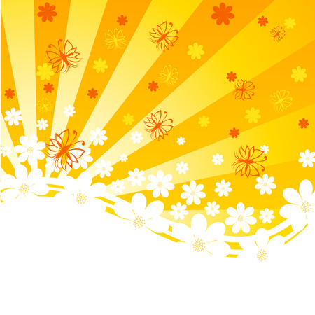 spring: vector illustration of an orange background with daisies and butterflies on sunny background