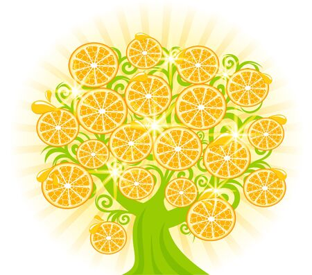 illustration of a tree with slices of oranges.  Vectores