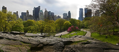 Summer in Central Park, NYC photo
