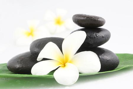 black stones: Zen stones with frangipani flower on white Stock Photo