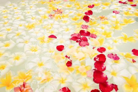 Spa bain plein de fleurs de frangipanier pour la détente Banque d'images - 85942207