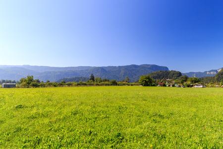 pastoral scenery: Slovenia Brad pastoral scenery