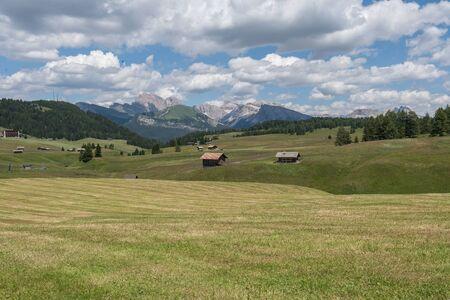 Paesaggi sull'Alpe di Siusi con il Sassolungo o il gruppo montuoso del Sassolungo sullo sfondo in estate, Alto Adige, Italia