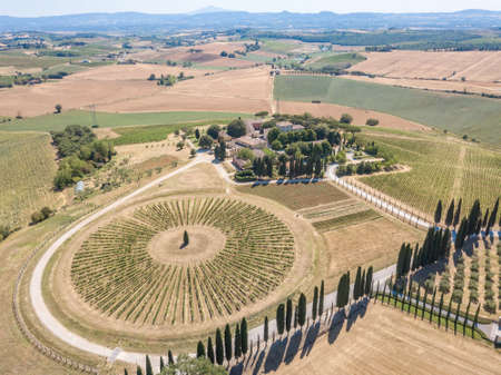 Aerial photography of vineyards and winery in Tuscany, Italy