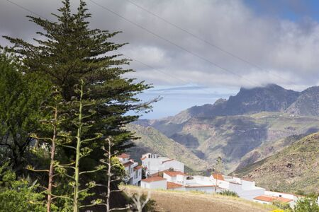 Big mountain and palm tree cover little white houses town, idyllic village in the mountains of Gran Canaria, Tejeda, Canary islands, Spain
