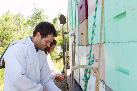 ensuring: Workers ensuring load of beehives is secure Stock Photo