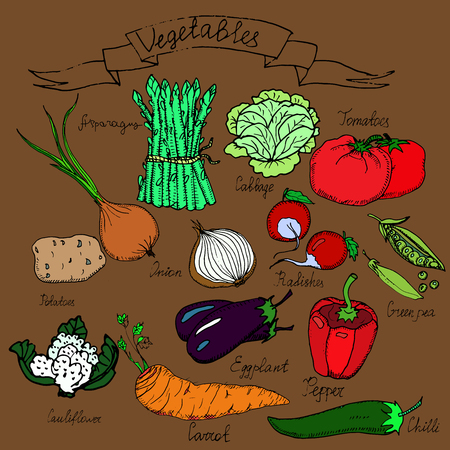 egg plant: Hand drawn vector vegetables set with lettering.