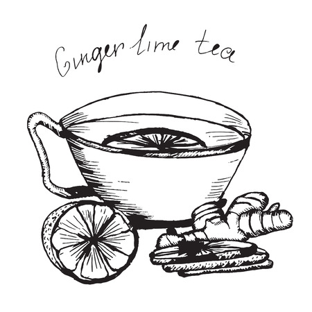 tea party: Hand draw vector sketch. Illustration cup of tea with lime and ginger. Pencil drawing.