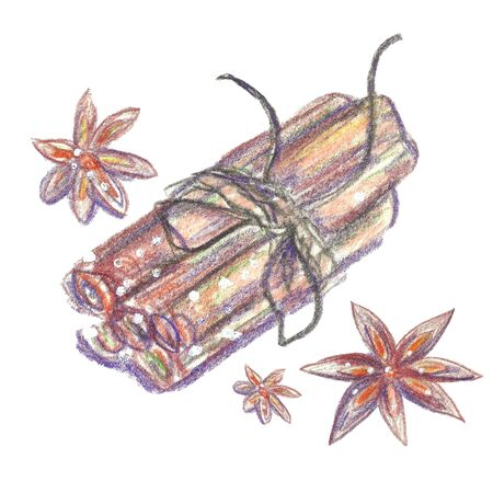 anise: Watercolor crayons Christmas background. Spices. Cinnamon sticks and cardamom. Isolated on white.