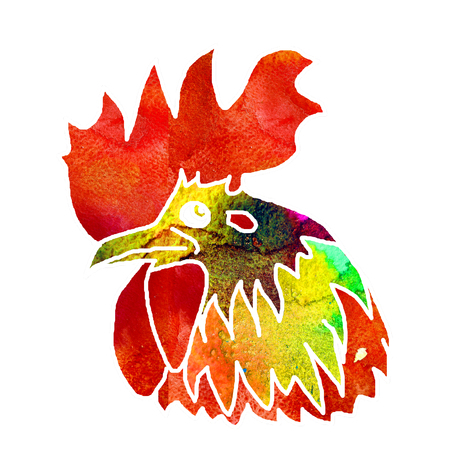 Watercolor  Rooster. illustration with splash watercolor textured background. 2017 is the year of Red Fire Chicken on Chinese zodiac. Stock Photo