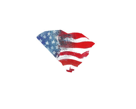 great: United States Of America. Watercolor texture of American flag. South Carolina.