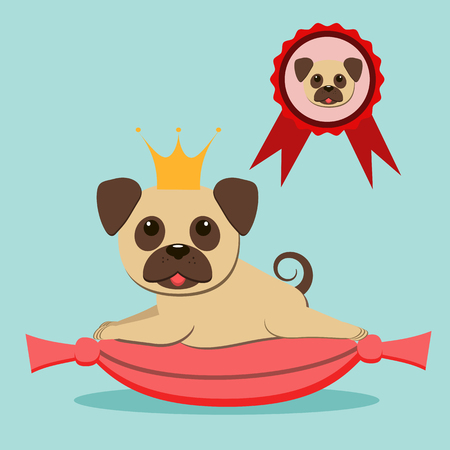 Cute pug in the golden crown lies on a velvet cushion. Queen of the Dog Show. Vector illustration. Flat style.