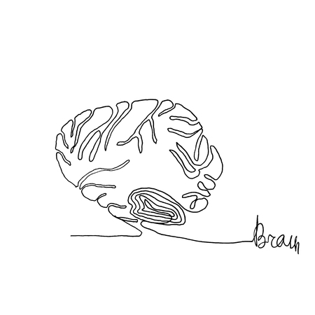 Continuous one line drawing. Anatomy humans brain. Minimalism style.