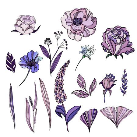 Vector set of cute hand drawn flowers. Roses, violets, Ranunculus, lupins, leaves of ginkgo biloba. Trendy ultraviolet color.