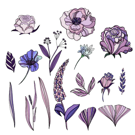 Vector set of cute hand drawn flowers. Roses, violets, Ranunculus, lupins, leaves of ginkgo biloba. Trendy ultraviolet color.