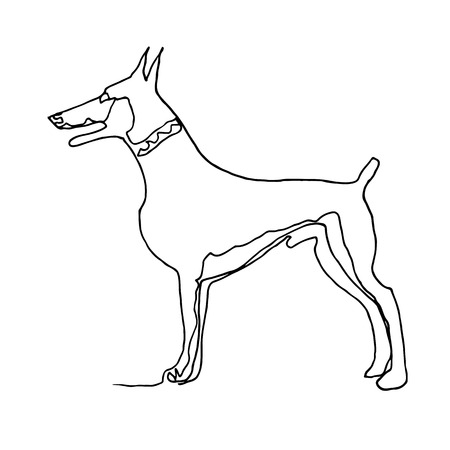 Continuous one line drawing. Dog. Minimalism style. Vector Ink illustration of Doberman for your design, card, banner, poster, flyer.