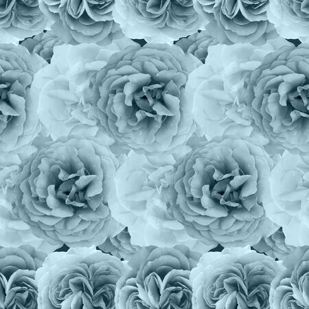 Cute beautiful pale roses. Seamless floral photo background. Digital mixed media artwork for wrapping paper, wallpaper design, textile, fabric, apparel. Stock Photo