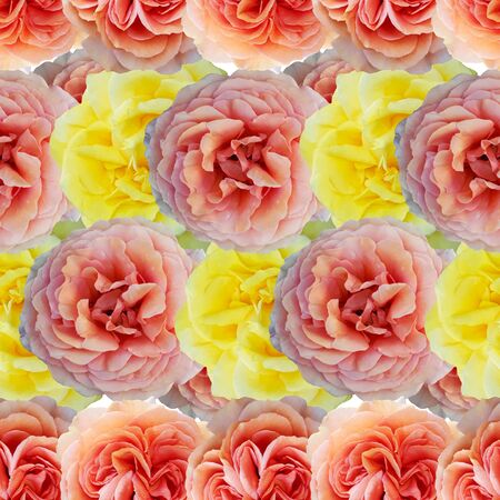 Cute beautiful salmon, pink and yellow roses. Seamless floral photo background. Digital mixed media artwork for wrapping paper, wallpaper design, textile, fabric, apparel. Stock fotó