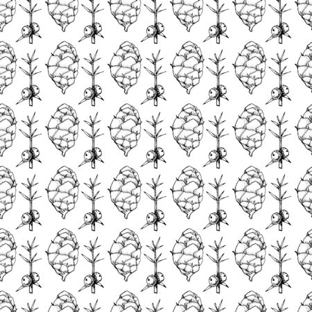 Botanical seamless pattern in vintage style. Various leaves of ferns, cones, horsetail, calamus, sow thistle, wheat grass, holly. Vector engraving black and white illustration.  Illusztráció