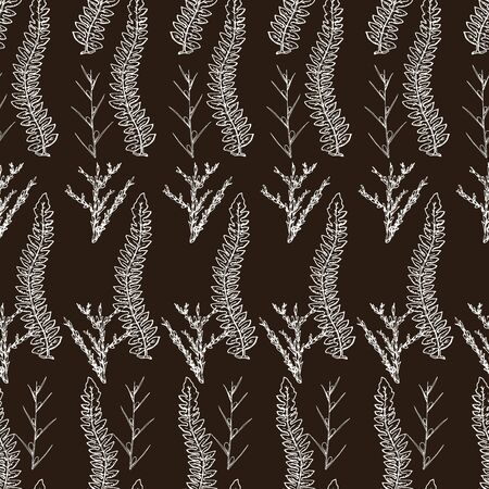 Botanical seamless pattern in vintage style. Various leaves of ferns, cones, horsetail, calamus, sow thistle, wheat grass, holly. Vector engraving black and white illustration.  Ilustracja