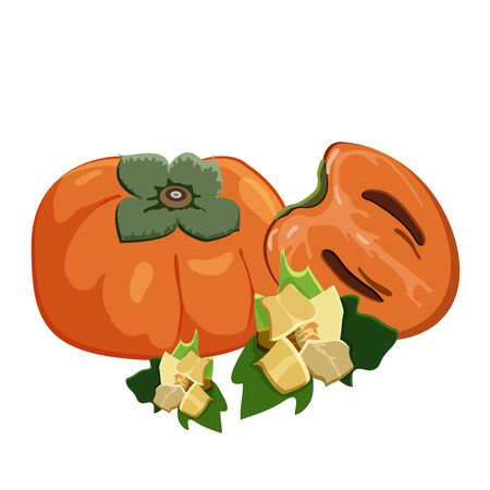 Set of persimmons fruit on white background. Ripe fresh juice persimmon, sliced fruit and persimmons flowers. Vector illustration. Stock Illustratie