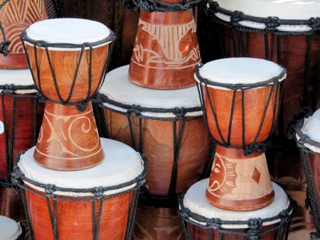 the drum: Bongo drums