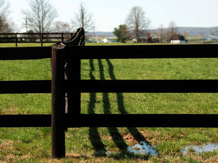 Wooden fence guarding the field and farm house