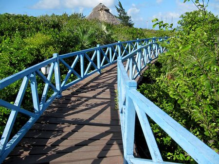 Wooden walkway across the mangrove trees to the beach