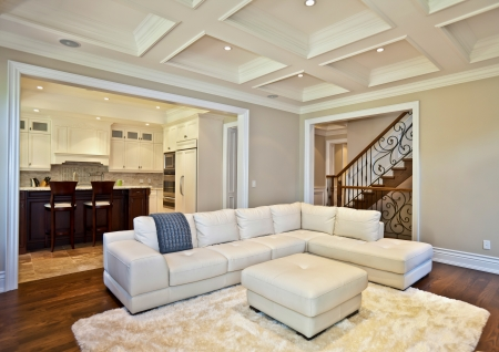 Elegant living room in a luxury estate house photo