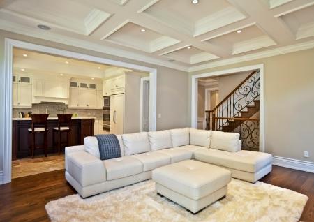 haus beleuchtung: Elegantes Wohnzimmer in einem Luxus-Immobilien-Haus