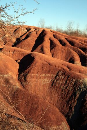 red soil: Badlands and trees
