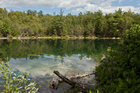 Forest lake Stock Photo - 16850963