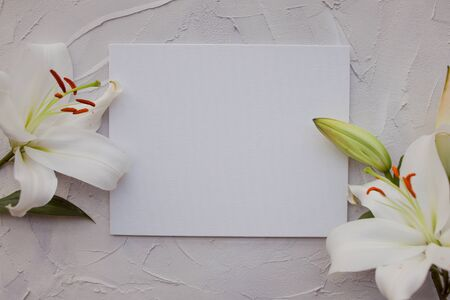 Stylish minimalist design with white lilies on a gray background texture of cement. Boho loft style, copy space. White blank sheet in the center in a frame of flowers.