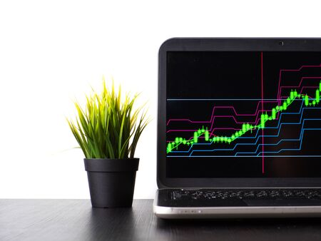 Stock charts, stock prices, and currency price growth. Laptop on the table with a growing schedule Stock fotó