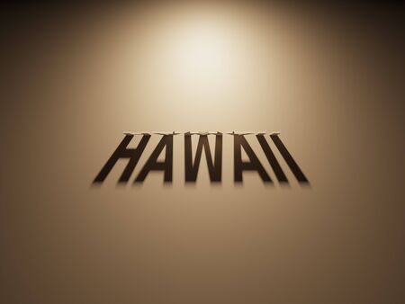 A 3D Rendering of the Shadow of an upside down text that reads Hawaii.