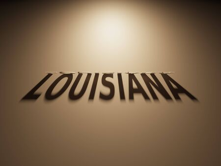 upside: A 3D Rendering of the Shadow of an upside down text that reads Louisiana.