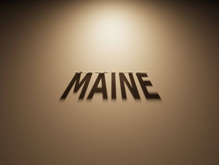 upside: A 3D Rendering of the Shadow of an upside down text that reads Maine,