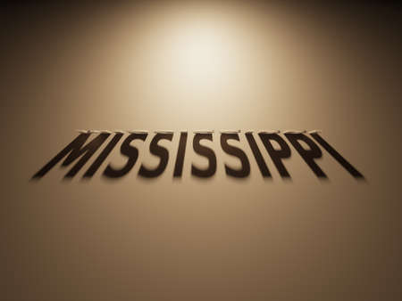 upside down: A 3D Rendering of the Shadow of an upside down text that reads Mississippi.