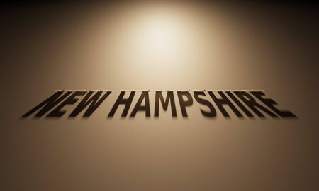 upside: A 3D Rendering of the Shadow of an upside down text that reads New Hampshire.