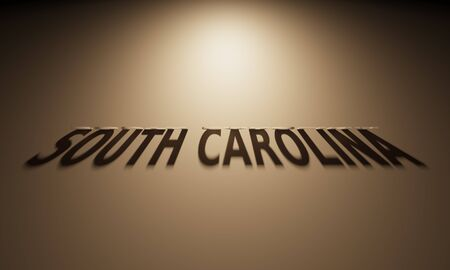 upside: A 3D Rendering of the Shadow of an upside down text that reads South Carolina.