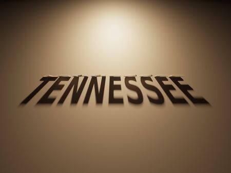 upside down: A 3D Rendering of the Shadow of an upside down text that reads Tennessee.